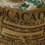 Kakao – pogromca nowotworów!